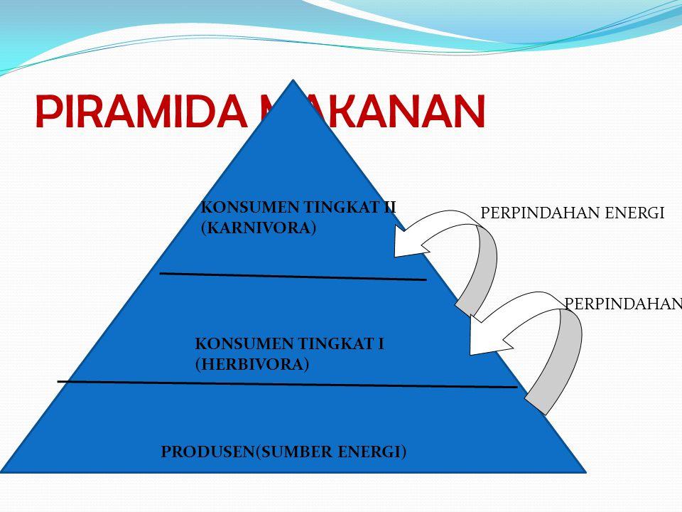 PIRAMIDA MAKANAN KONSUMEN TINGKAT II (KARNIVORA) PERPINDAHAN ENERGI