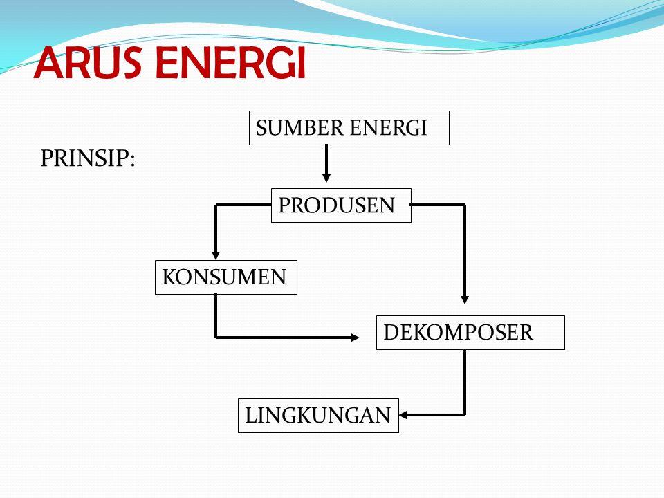 ARUS ENERGI PRINSIP: SUMBER ENERGI PRODUSEN KONSUMEN DEKOMPOSER