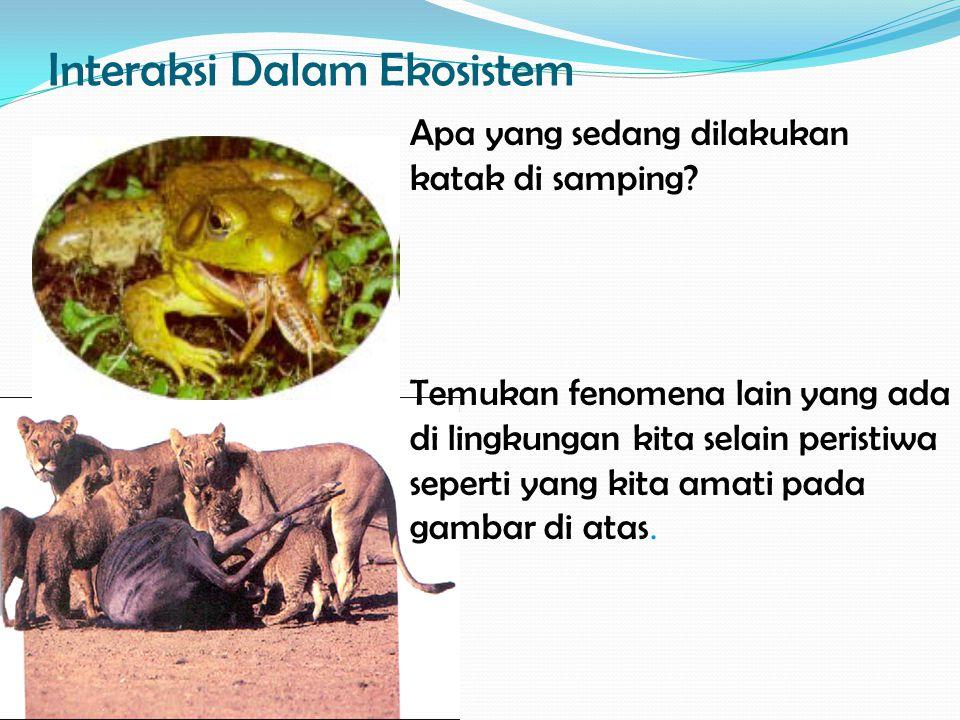 Interaksi Dalam Ekosistem