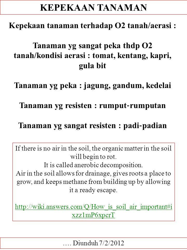 KEPEKAAN TANAMAN Kepekaan tanaman terhadap O2 tanah/aerasi :