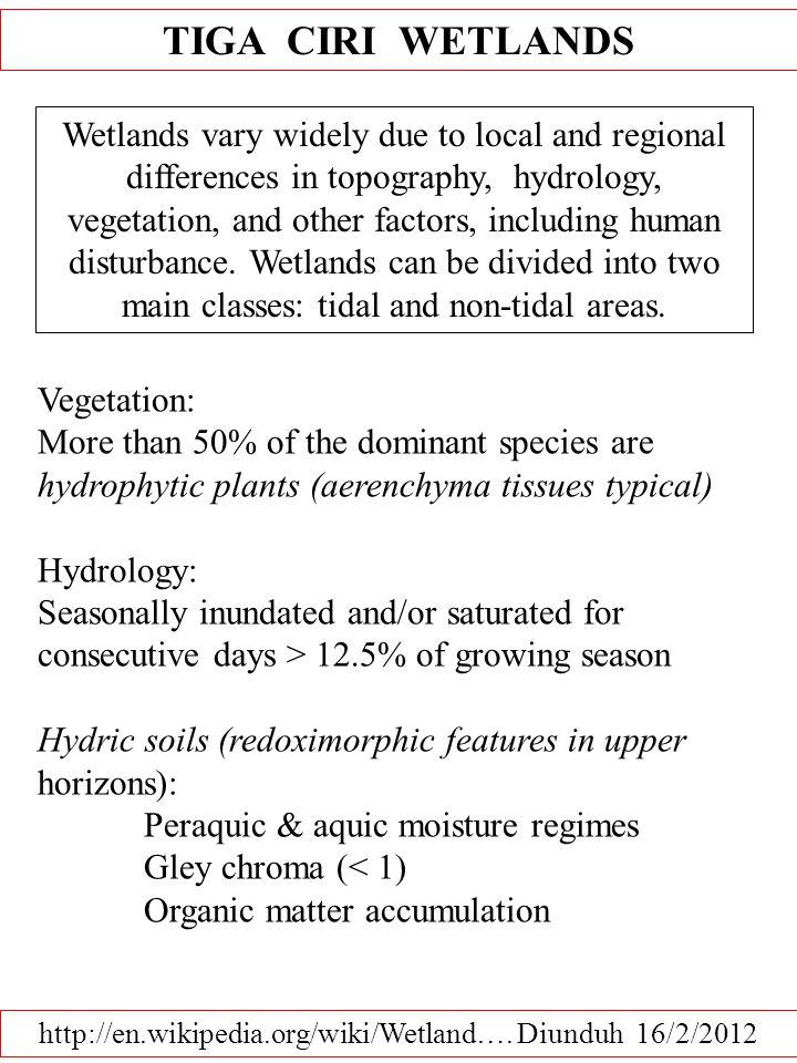 http://en.wikipedia.org/wiki/Wetland…. Diunduh 16/2/2012