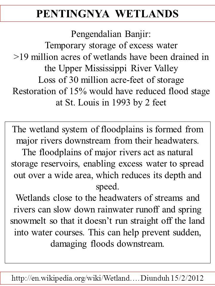 PENTINGNYA WETLANDS Pengendalian Banjir: