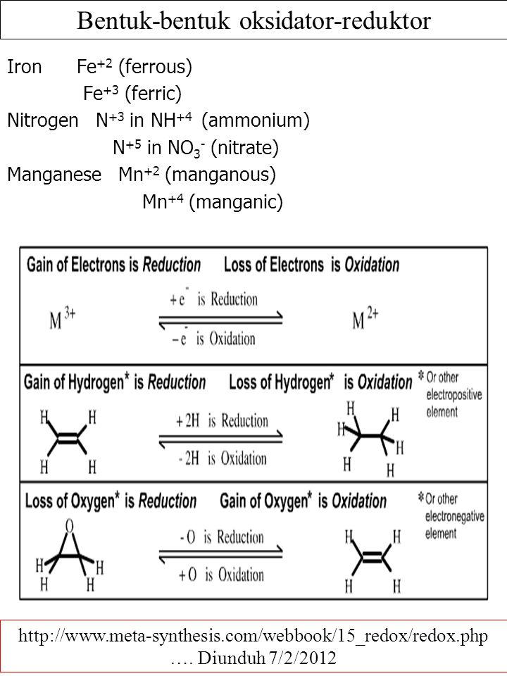 Bentuk-bentuk oksidator-reduktor