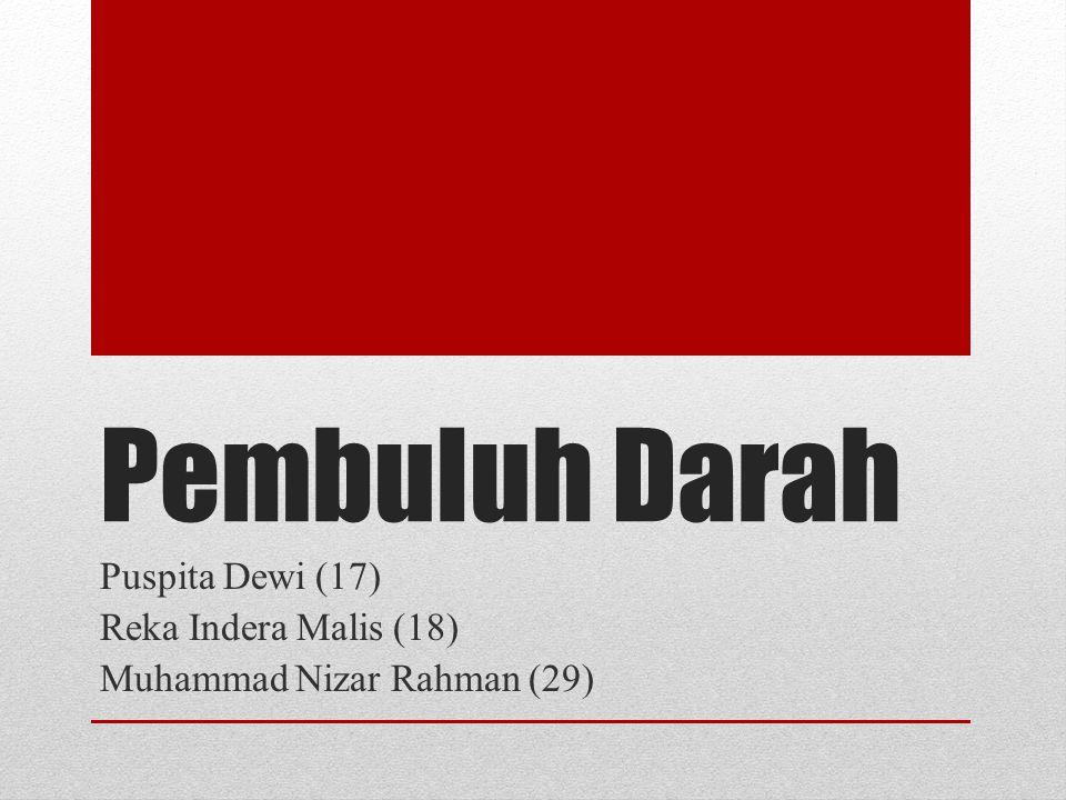 Puspita Dewi (17) Reka Indera Malis (18) Muhammad Nizar Rahman (29)