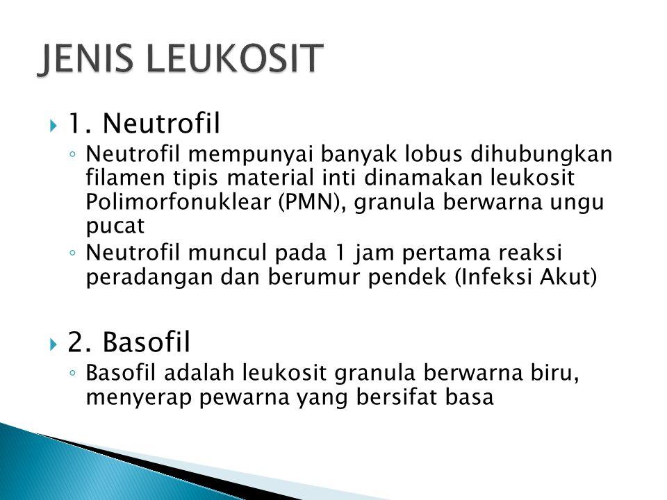 JENIS LEUKOSIT 1. Neutrofil 2. Basofil