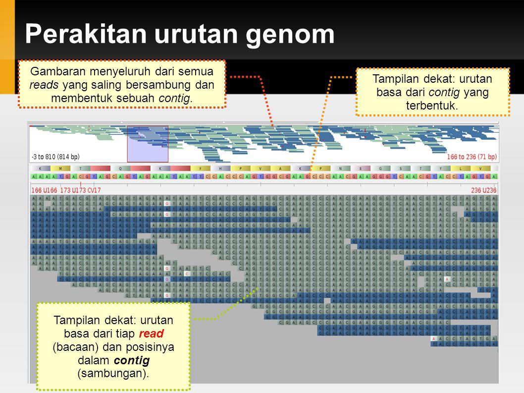 Perakitan urutan genom
