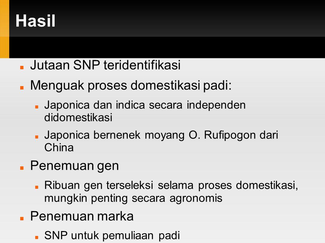 Hasil Jutaan SNP teridentifikasi Menguak proses domestikasi padi: