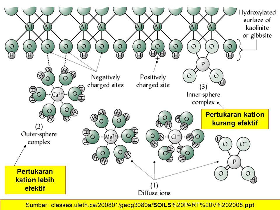 Pertukaran kation kurang efektif Pertukaran kation lebih efektif