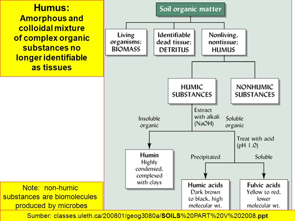 Humus: Amorphous and colloidal mixture of complex organic