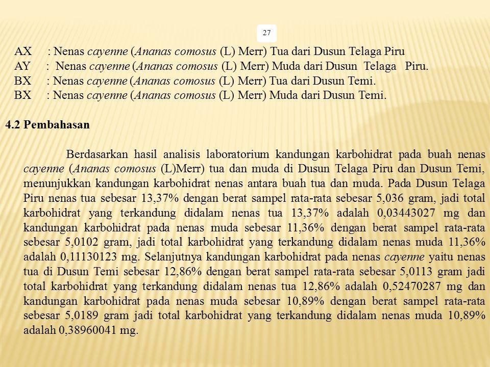 BX : Nenas cayenne (Ananas comosus (L) Merr) Tua dari Dusun Temi.