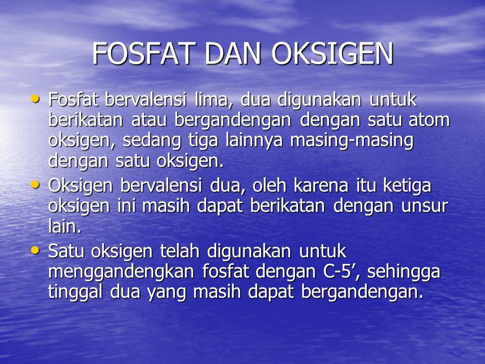 FOSFAT DAN OKSIGEN