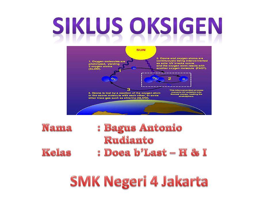 Siklus Oksigen SMK Negeri 4 Jakarta Nama : Bagus Antonio Rudianto
