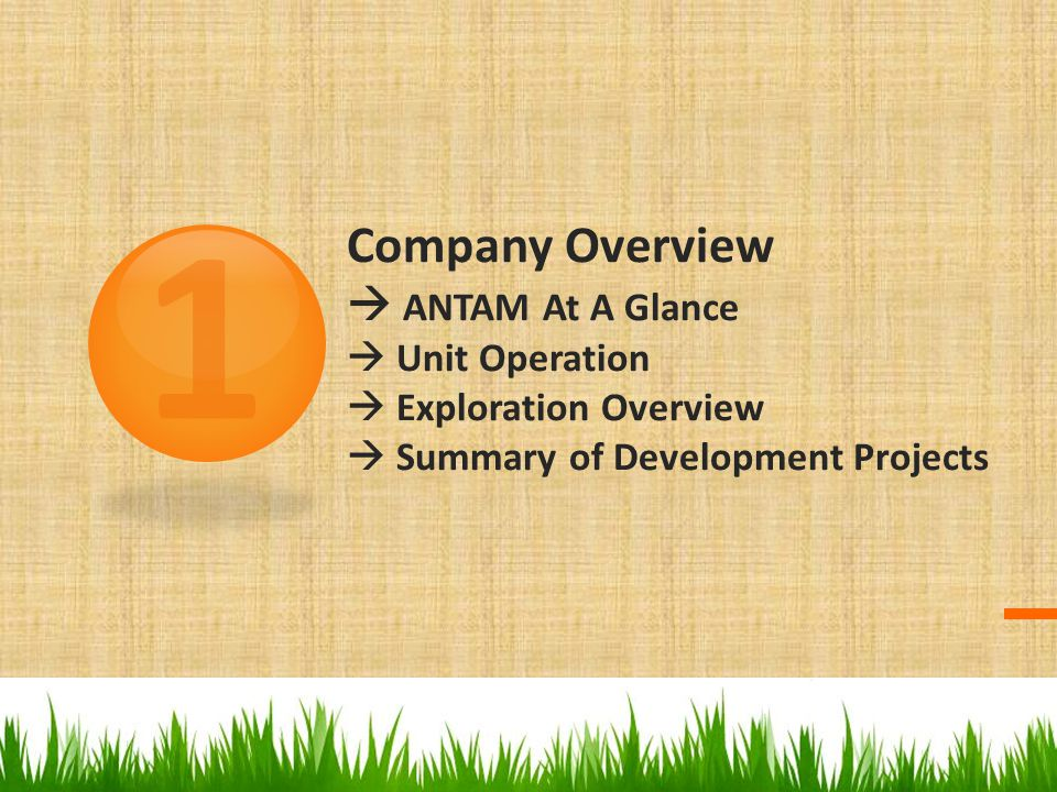 Company Overview  ANTAM At A Glance  Unit Operation  Exploration Overview  Summary of Development Projects