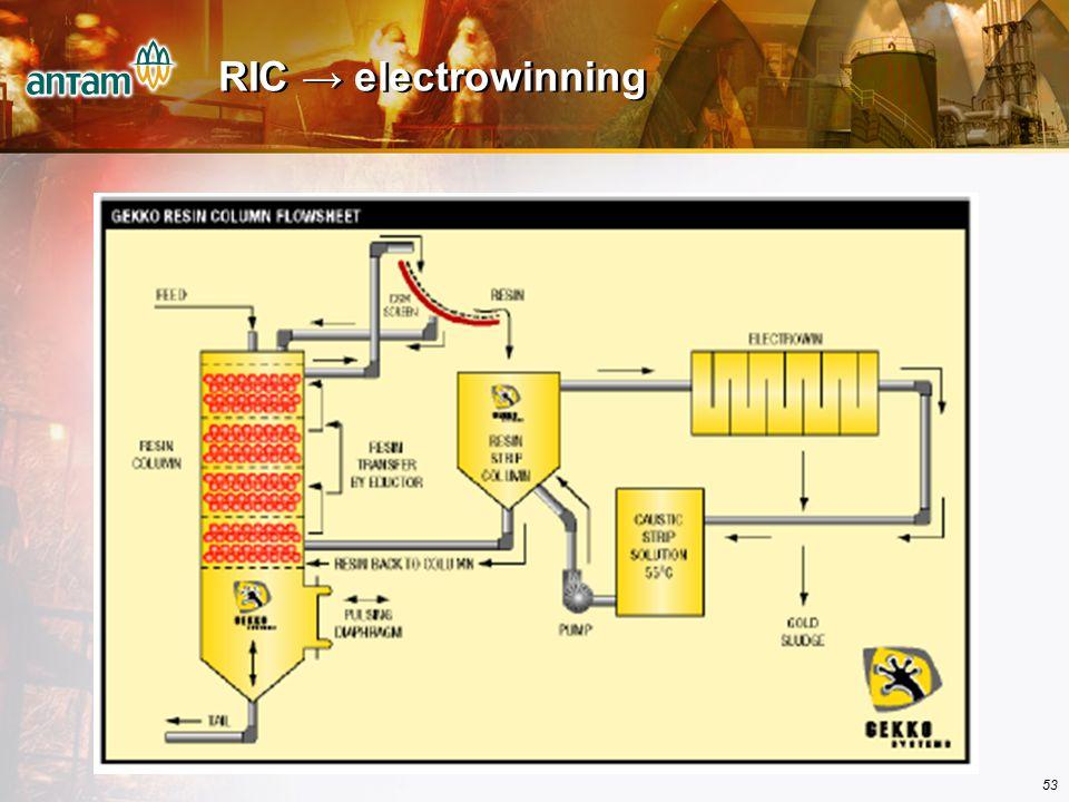 RIC → electrowinning