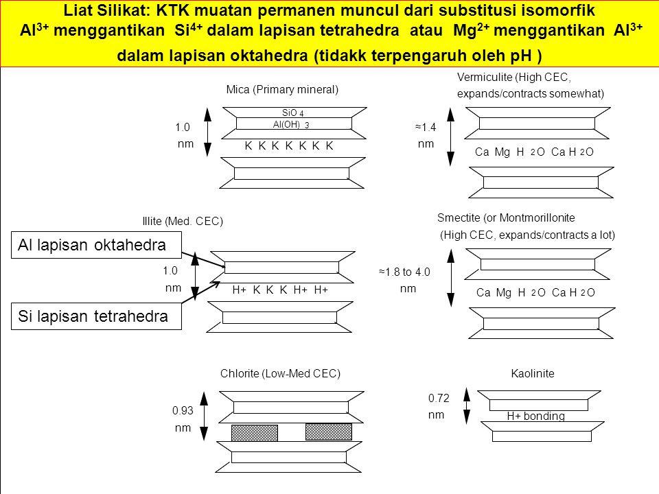 Liat Silikat: KTK muatan permanen muncul dari substitusi isomorfik