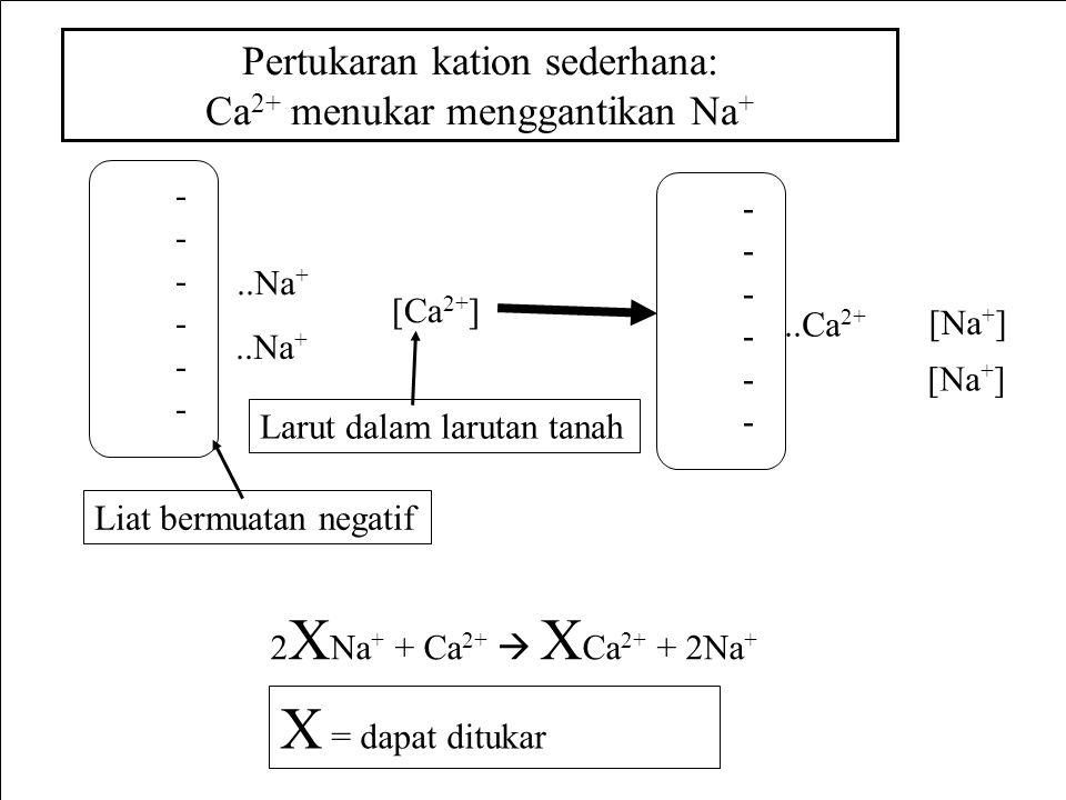 X = dapat ditukar Pertukaran kation sederhana: