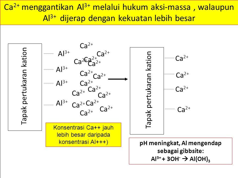 pH meningkat, Al mengendap sebagai gibbsite: