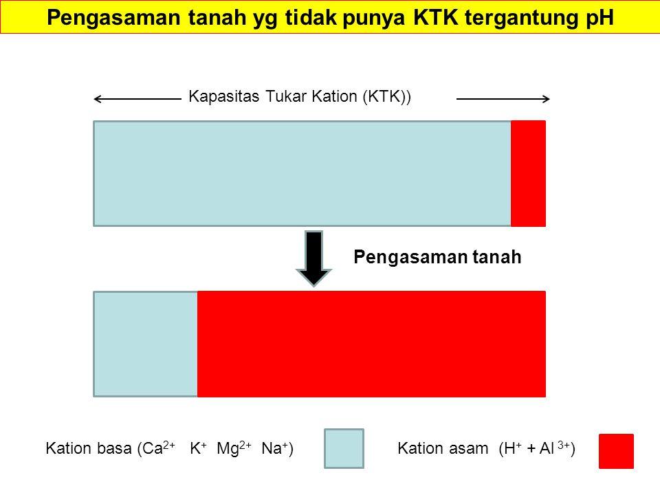 Pengasaman tanah yg tidak punya KTK tergantung pH