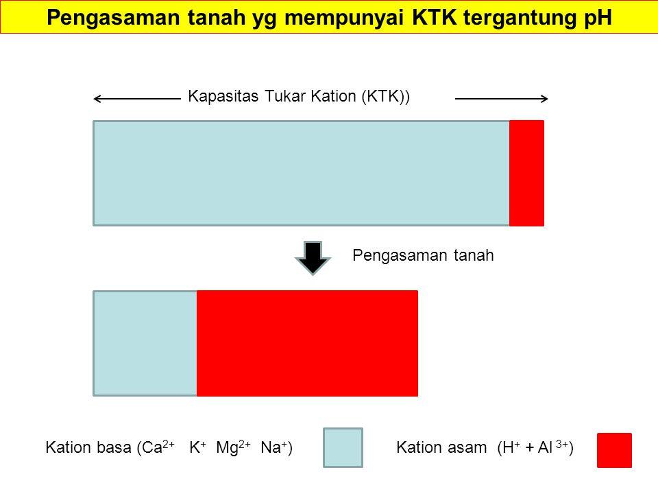 Pengasaman tanah yg mempunyai KTK tergantung pH