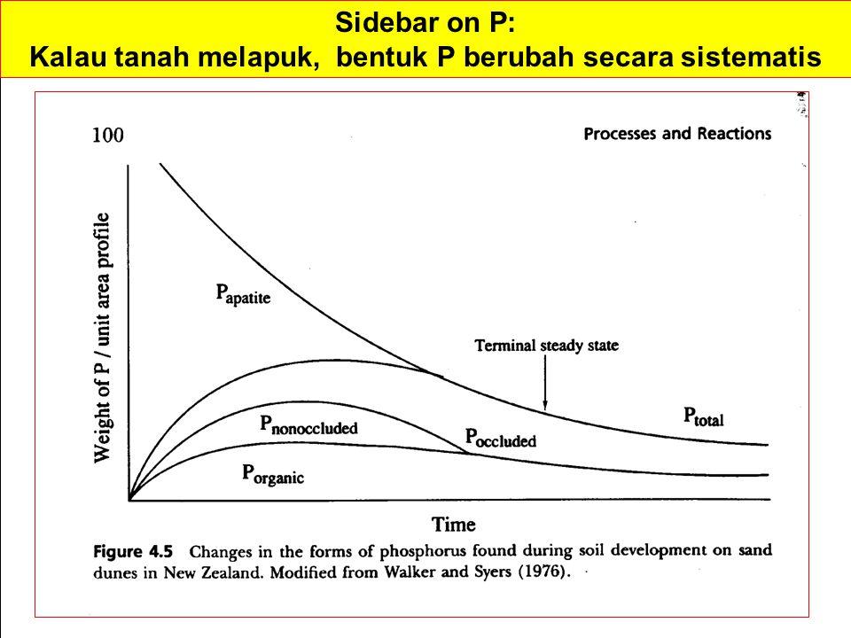 Kalau tanah melapuk, bentuk P berubah secara sistematis