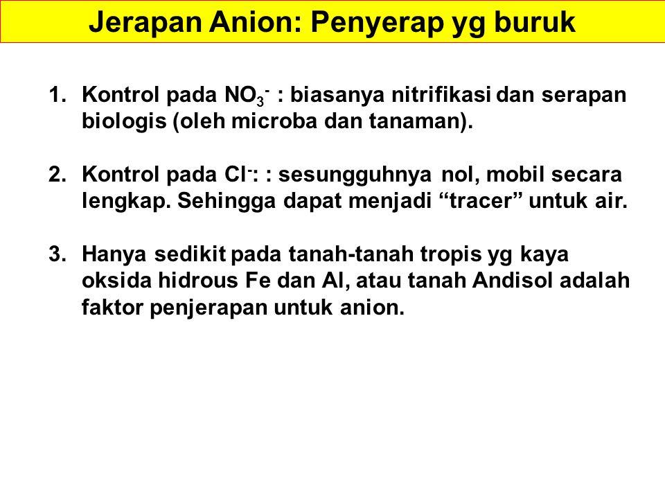 Jerapan Anion: Penyerap yg buruk