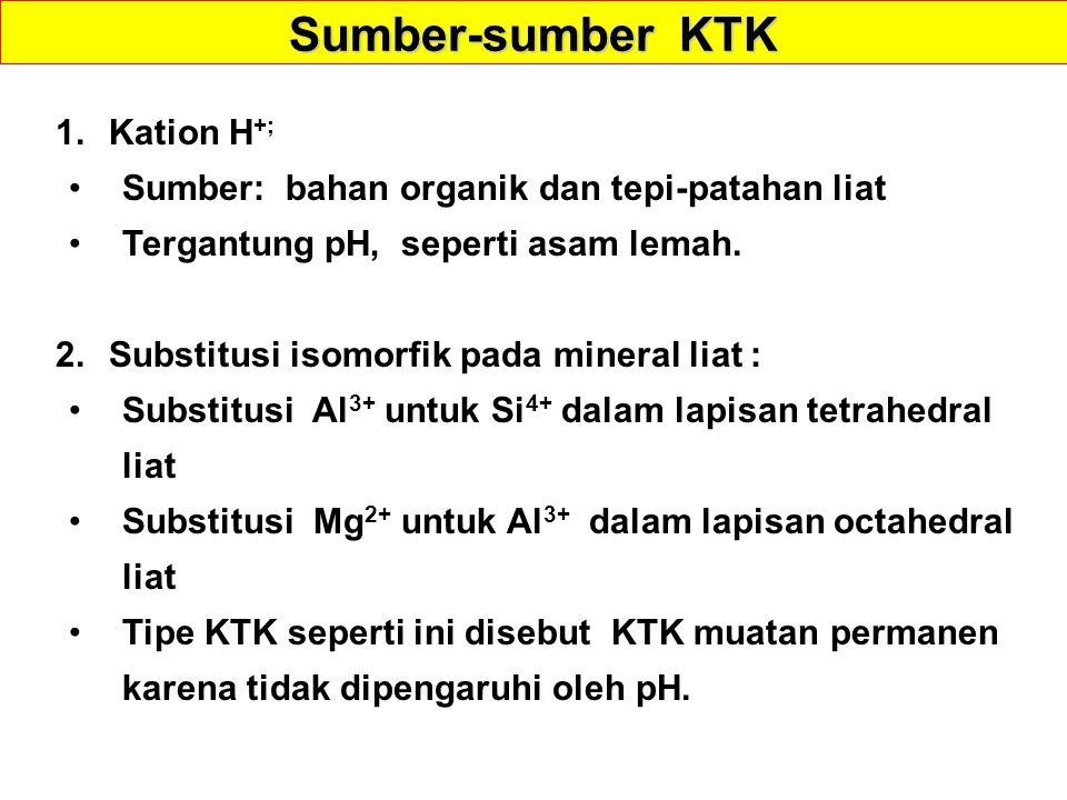 Sumber-sumber KTK Kation H+;