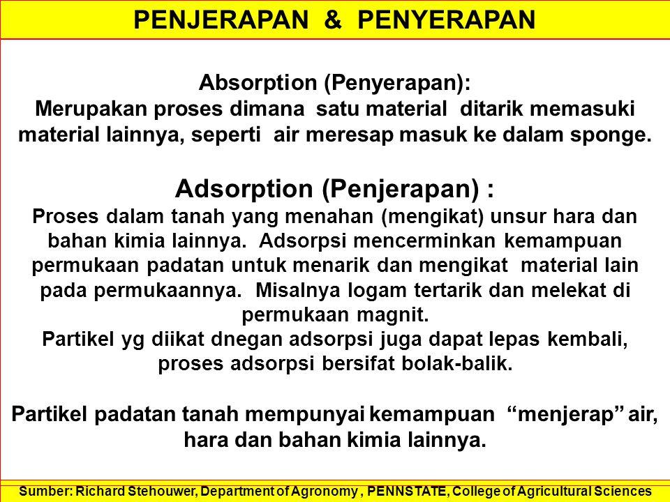 PENJERAPAN & PENYERAPAN Adsorption (Penjerapan) :