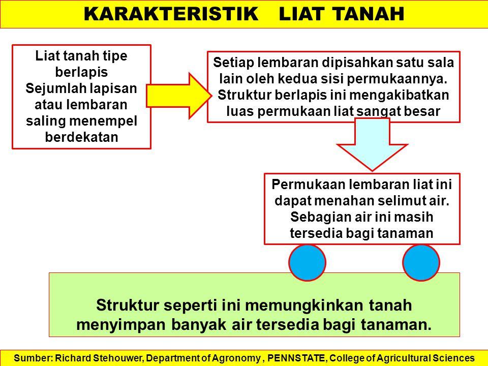 KARAKTERISTIK LIAT TANAH