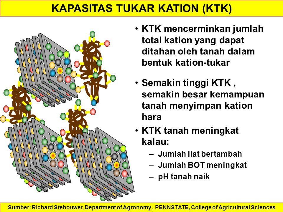 KAPASITAS TUKAR KATION (KTK)