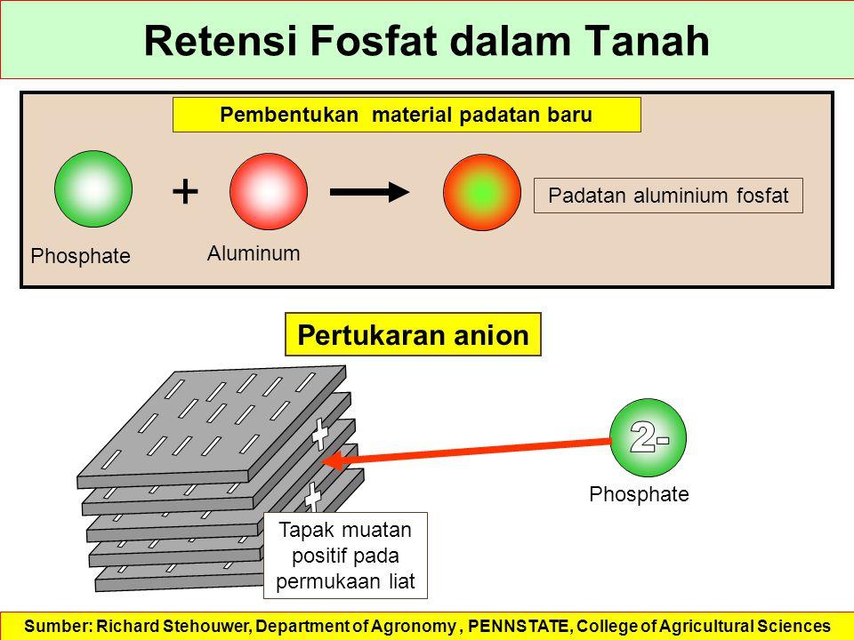 Retensi Fosfat dalam Tanah