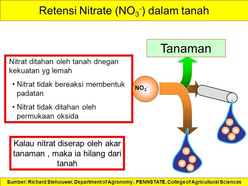 Retensi Nitrate (NO3-) dalam tanah