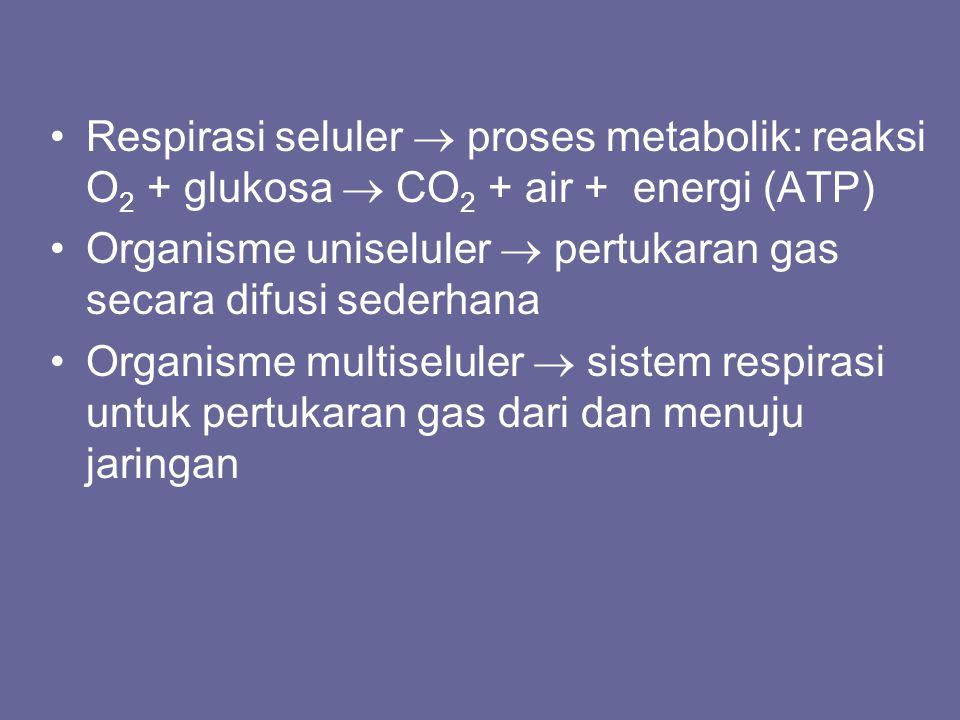 Respirasi seluler  proses metabolik: reaksi O2 + glukosa  CO2 + air + energi (ATP)