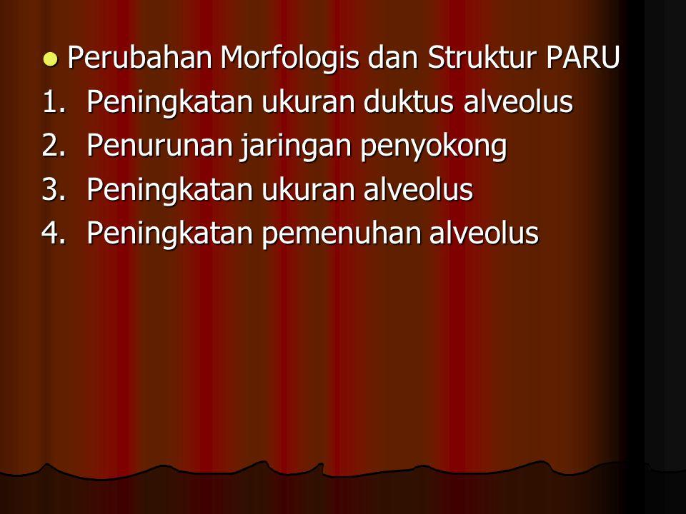 Perubahan Morfologis dan Struktur PARU