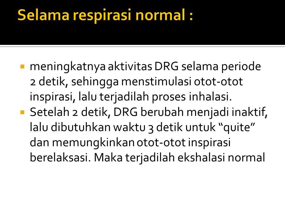 Selama respirasi normal :
