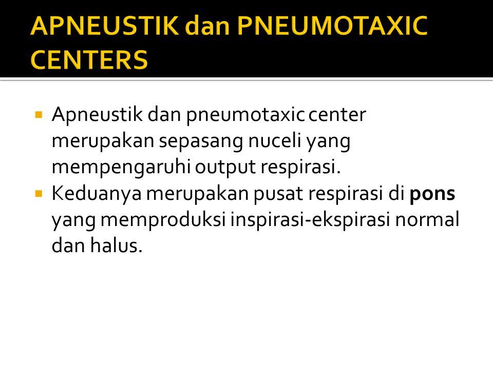 APNEUSTIK dan PNEUMOTAXIC CENTERS