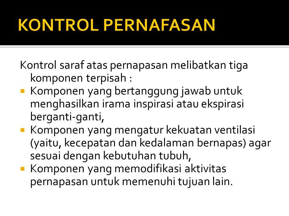 KONTROL PERNAFASAN Kontrol saraf atas pernapasan melibatkan tiga komponen terpisah :