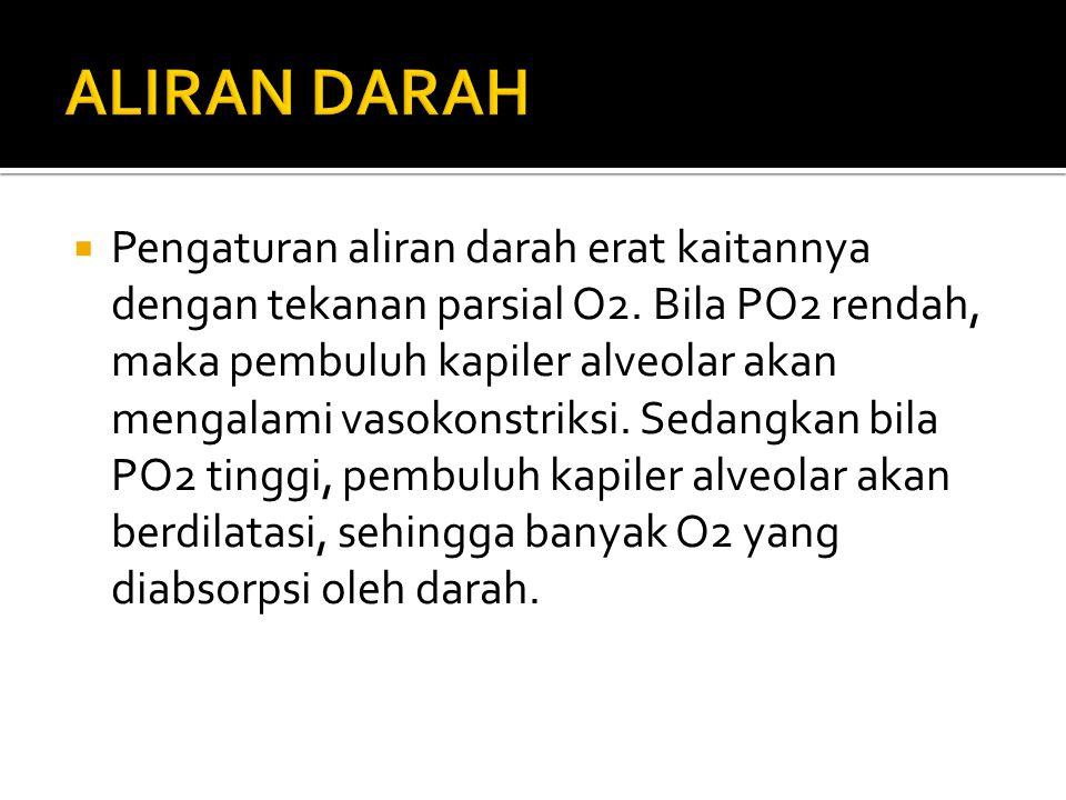 ALIRAN DARAH