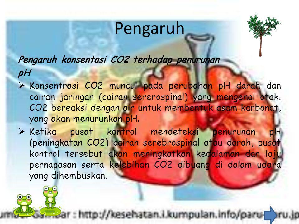 Pengaruh Pengaruh konsentasi CO2 terhadap penurunan pH
