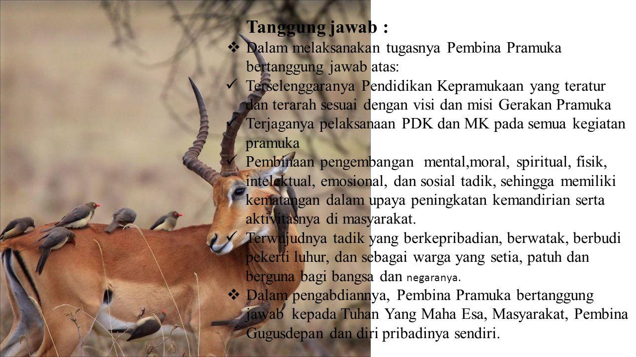 Tanggung jawab : Dalam melaksanakan tugasnya Pembina Pramuka bertanggung jawab atas: