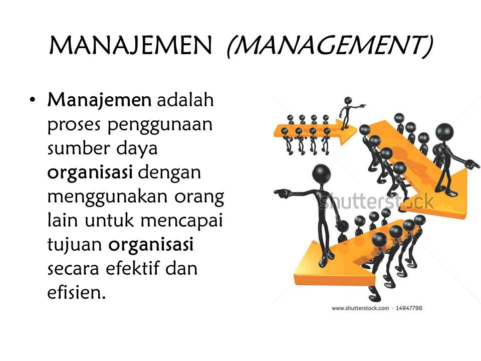 MANAJEMEN (MANAGEMENT)