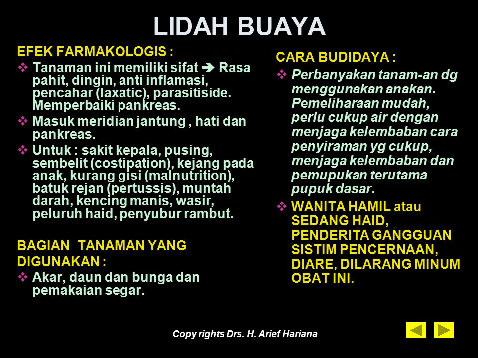 Copy rights Drs. H. Arief Hariana