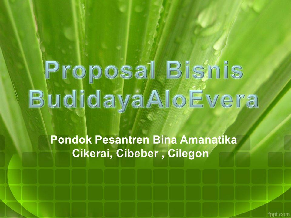 Proposal Bisnis BudidayaAloEvera