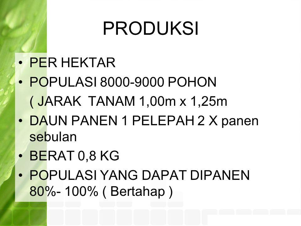 PRODUKSI PER HEKTAR POPULASI 8000-9000 POHON