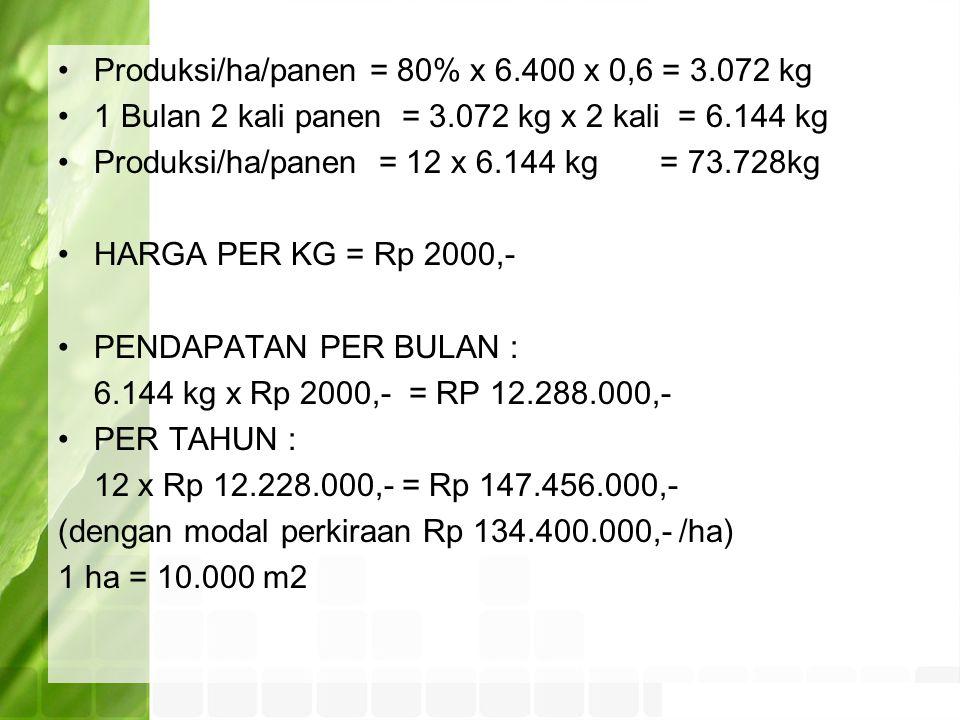 Produksi/ha/panen = 80% x 6.400 x 0,6 = 3.072 kg