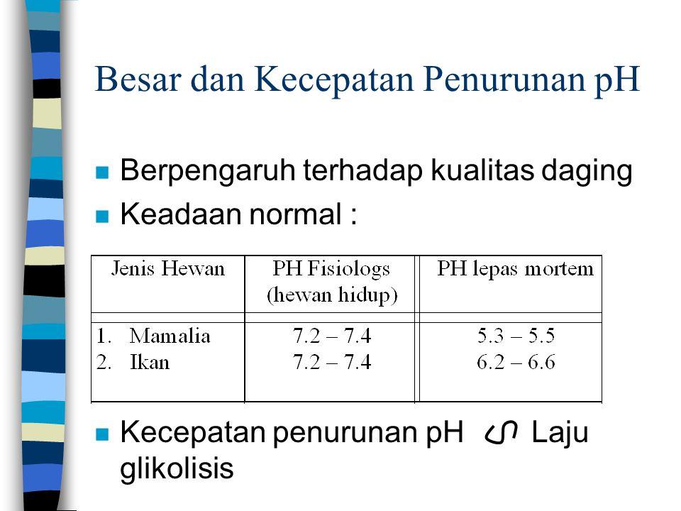 Besar dan Kecepatan Penurunan pH