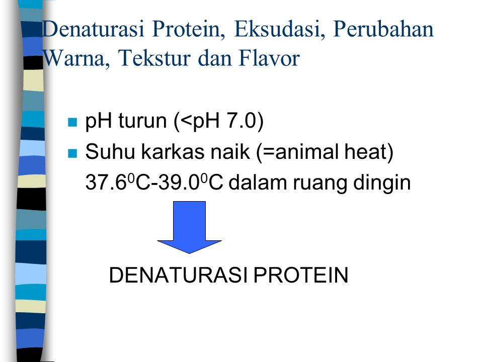 Denaturasi Protein, Eksudasi, Perubahan Warna, Tekstur dan Flavor