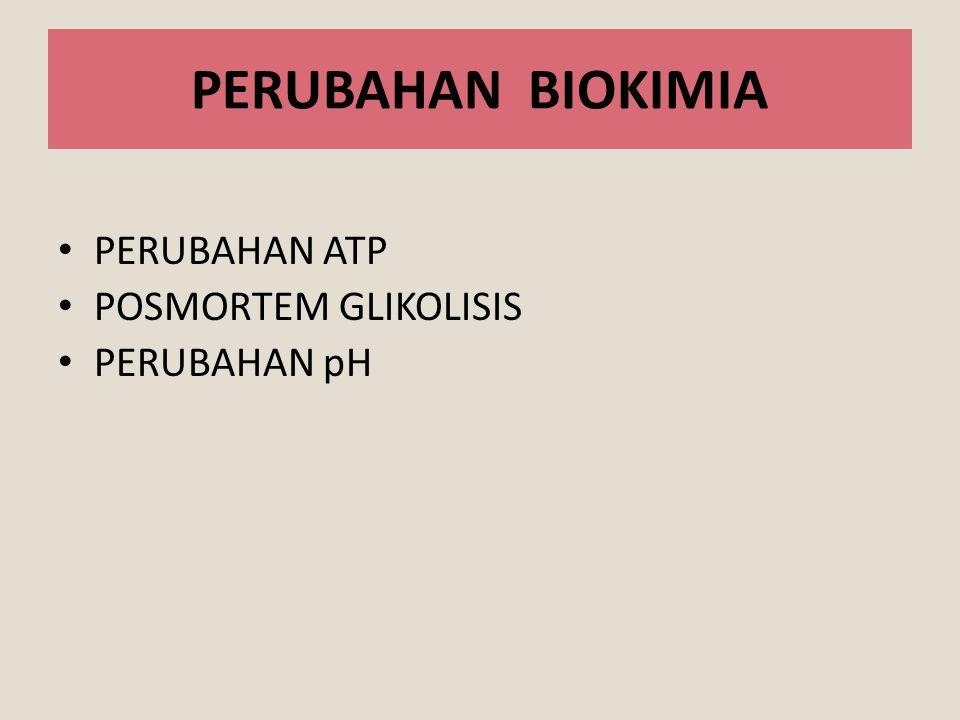 PERUBAHAN BIOKIMIA PERUBAHAN ATP POSMORTEM GLIKOLISIS PERUBAHAN pH