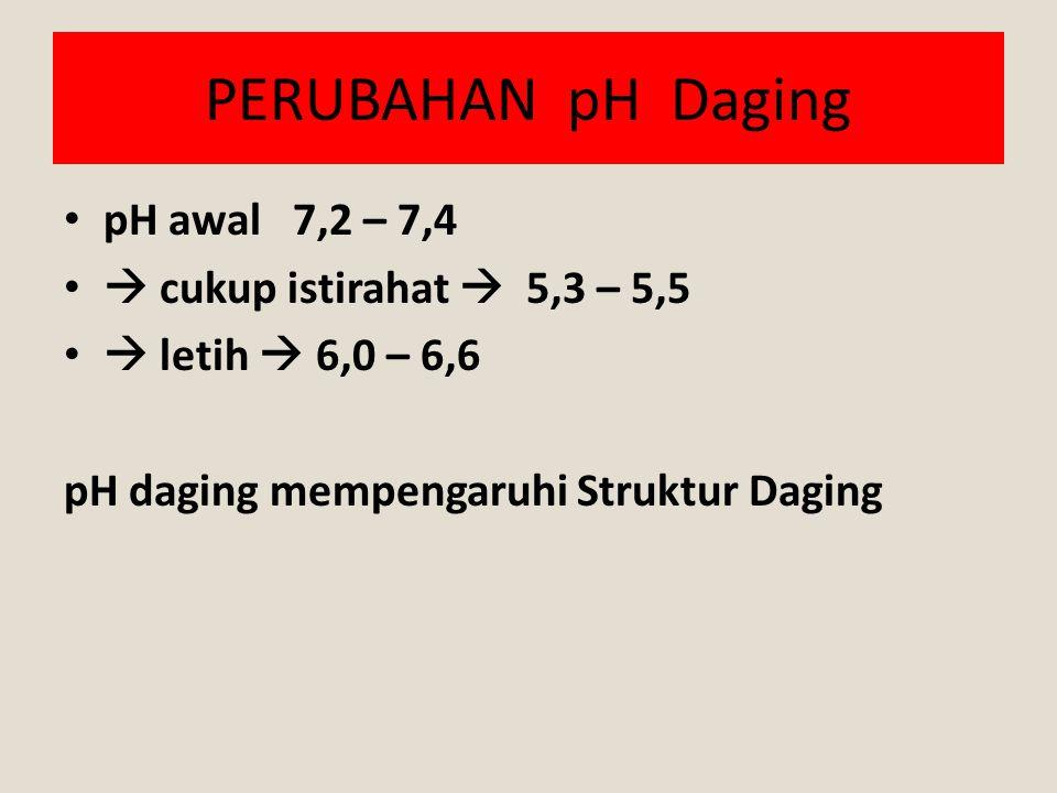 PERUBAHAN pH Daging pH awal 7,2 – 7,4  cukup istirahat  5,3 – 5,5