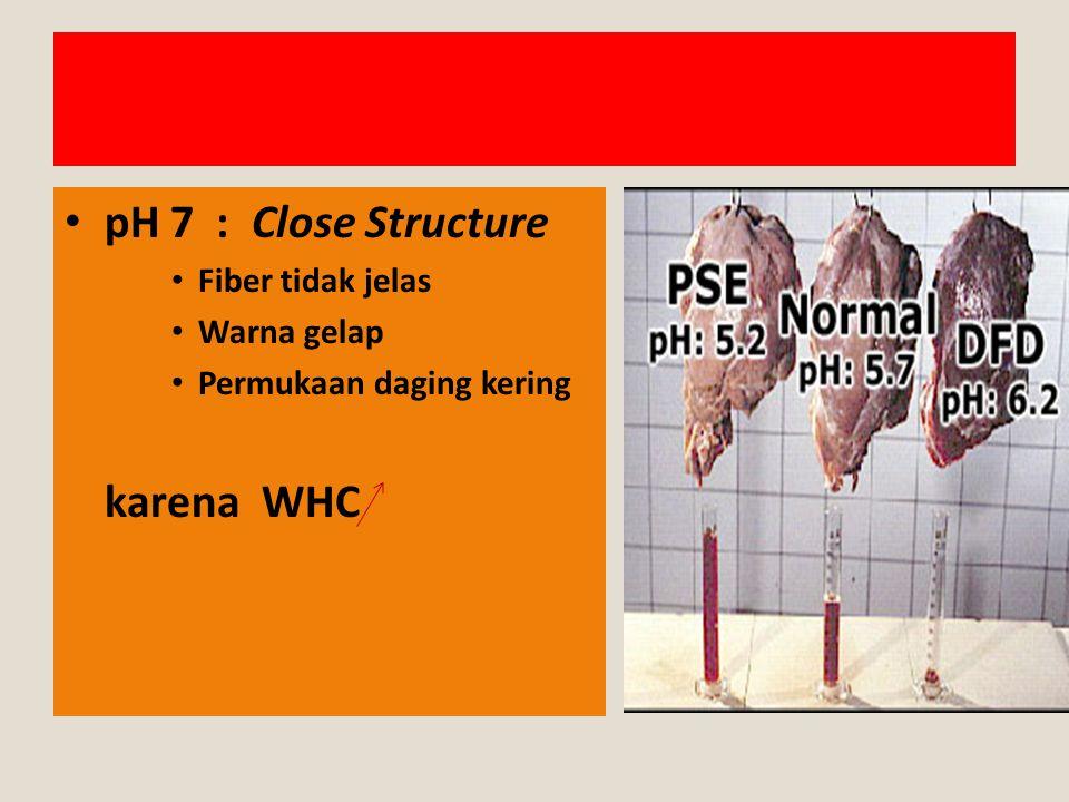 pH 7 : Close Structure karena WHC Fiber tidak jelas Warna gelap