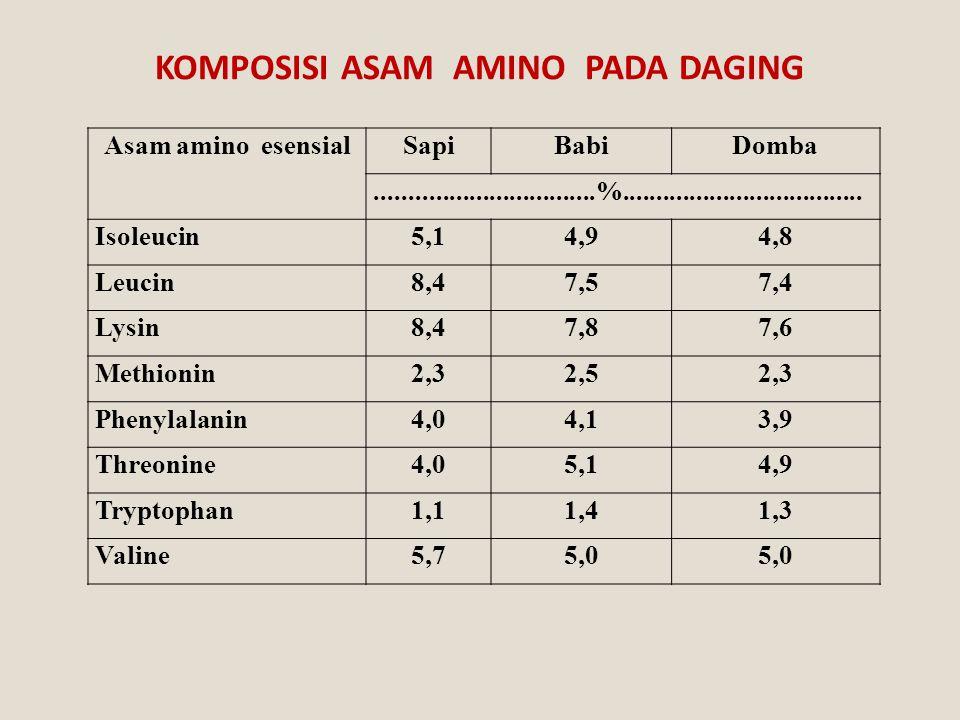 KOMPOSISI ASAM AMINO PADA DAGING